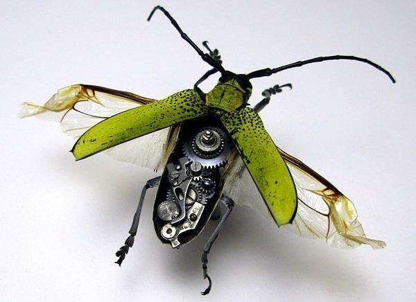 Серамский жёлтый жук - механические насекомые
