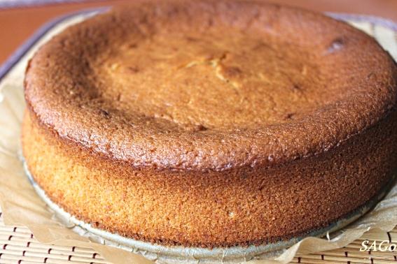 Торт с апельсином 033