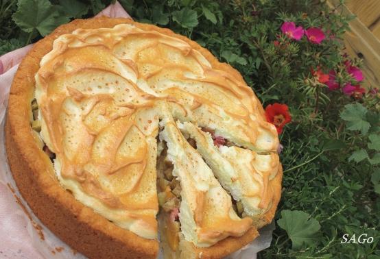 Пирог с ревенем и безе 018