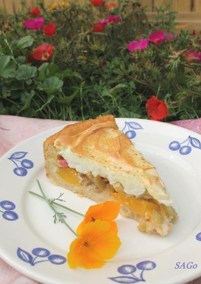 Пирог с ревенем и безе 022