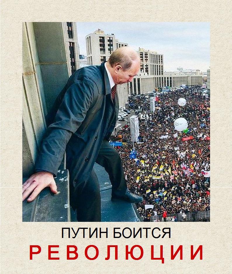 Путин_протесты_революция