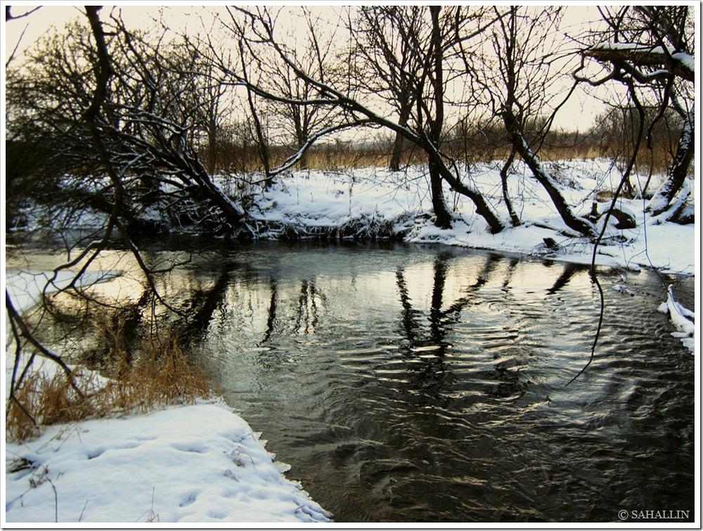 остров,сахалин,фото,зима,снег,река,sahallin,island,sakhalin,photo,picture,winter,snow,river