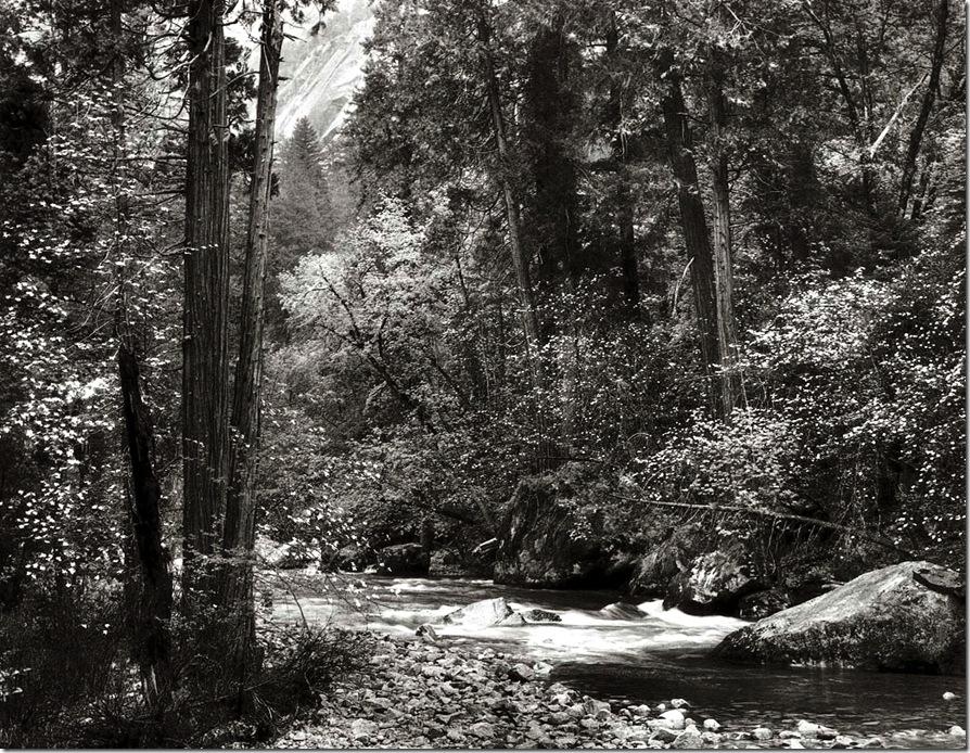 enaya_creek   Ansel Adams,photo,sahallin,Ансел Адамс,фото
