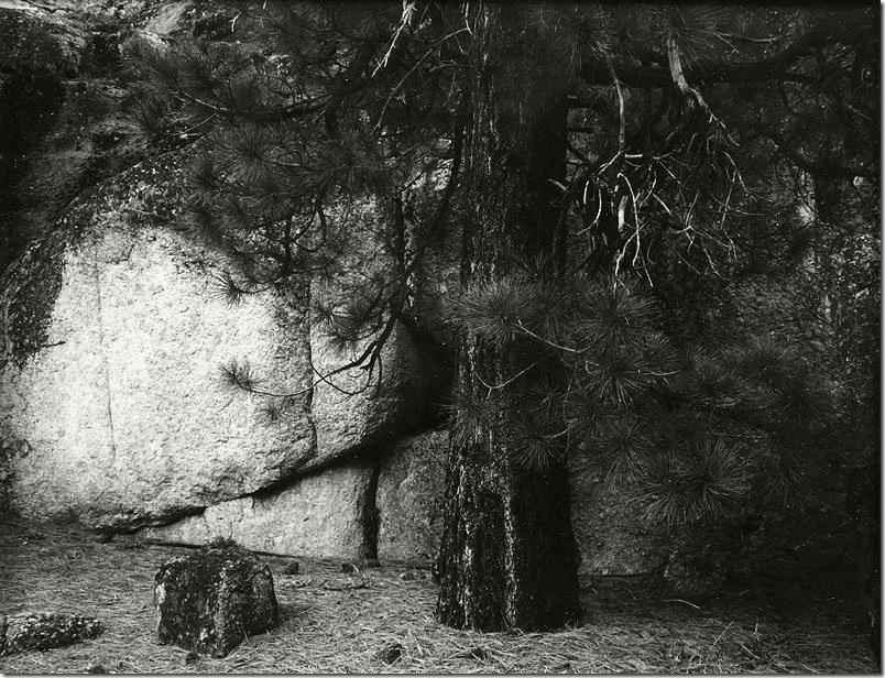 Ansel Adams,photo,sahallin,Ансел Адамс,фото