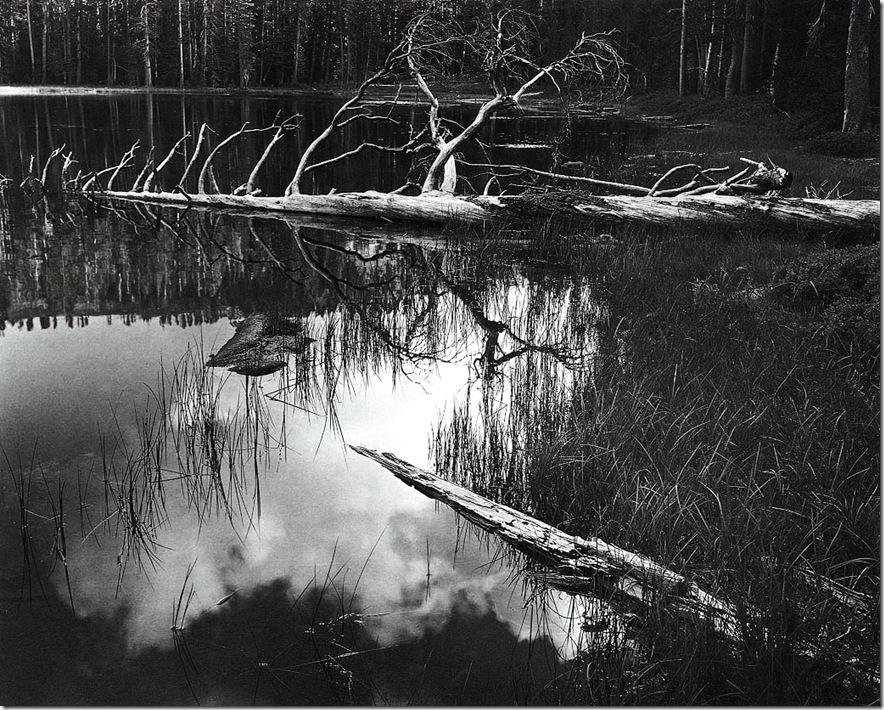 siesta_lake   Ansel Adams,photo,sahallin,Ансел Адамс,фото