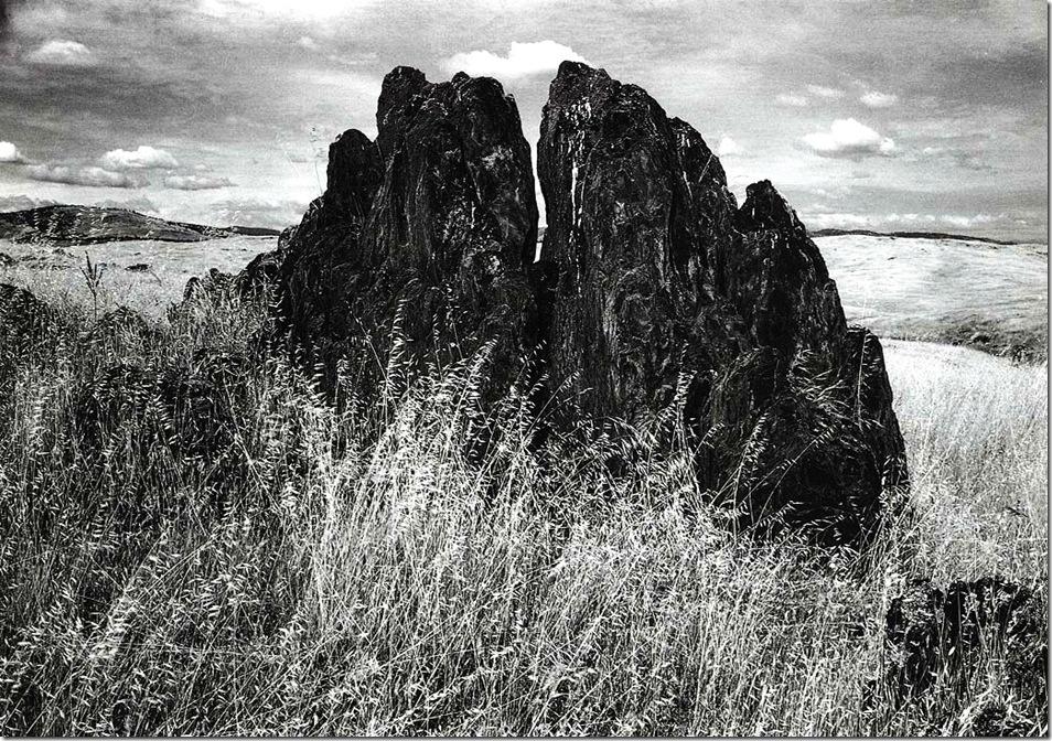 metamorphic_rock_and_summer_grass   Ansel Adams,photo,sahallin,Ансел Адамс,фото