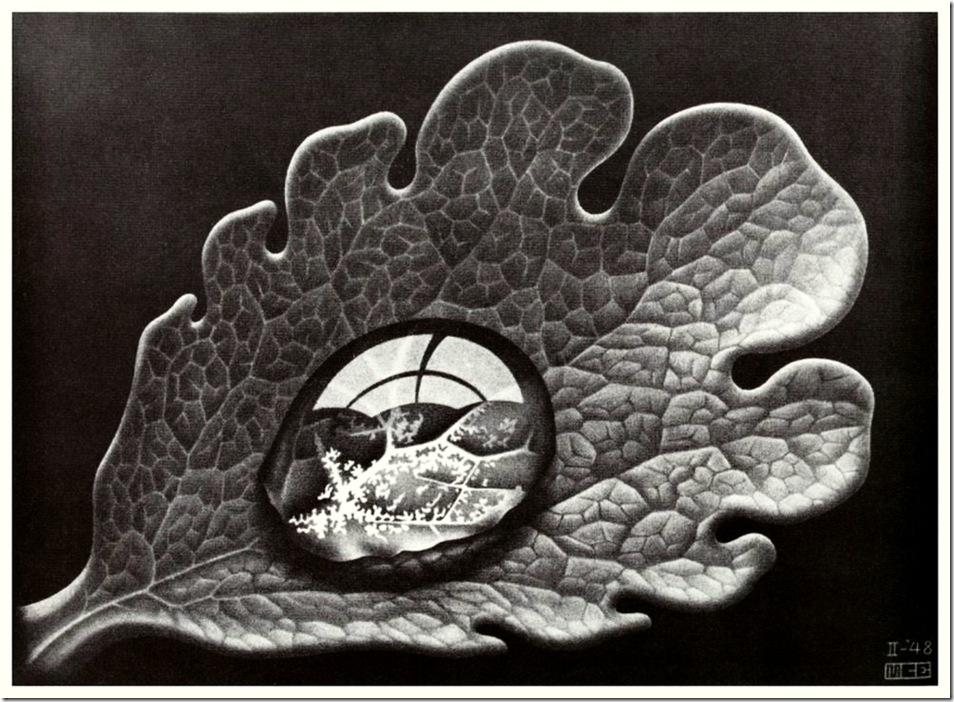 escher_dewdrop,Морис Корнелис Эшер ,Maurits Cornelis Escher,гравюра,художник,engraving,artist,holland,