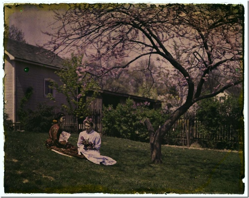 Two women under a Cherry Tree