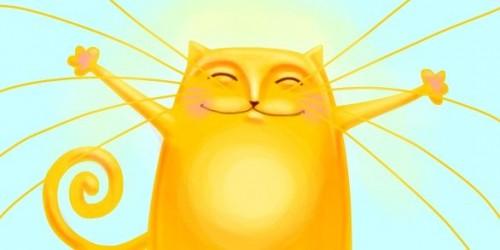 Солнечный котик.jpg