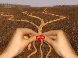 Плетение дорог
