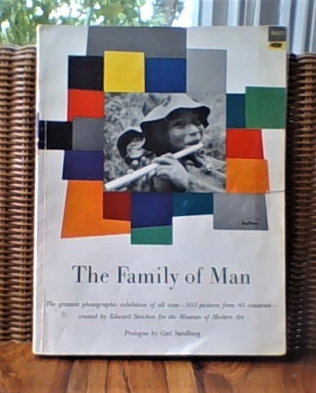 cropped photo of The Family of Man cover 2019