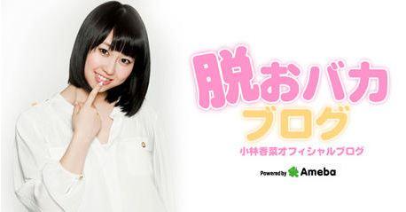 20130115_kobayashikana