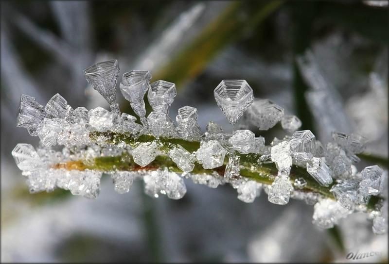 льдинки фото Мартин Амм
