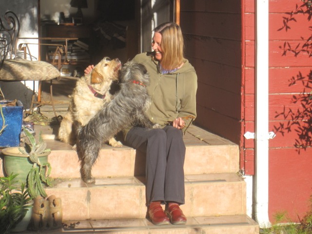 mutts & me 008