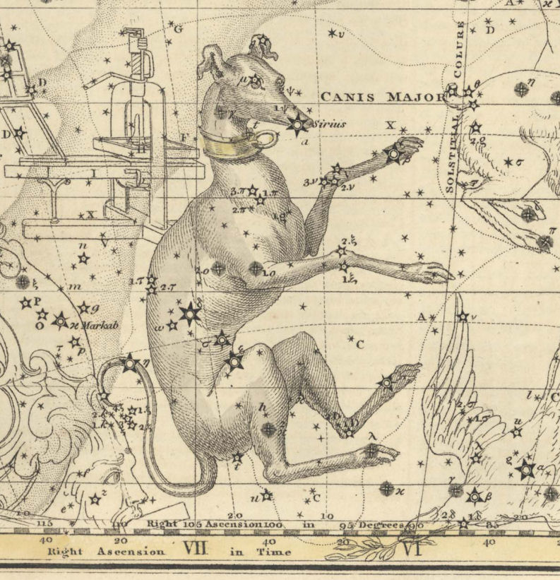canis major map