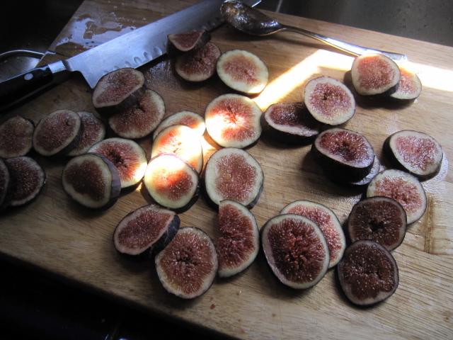 fig tart & pets 017