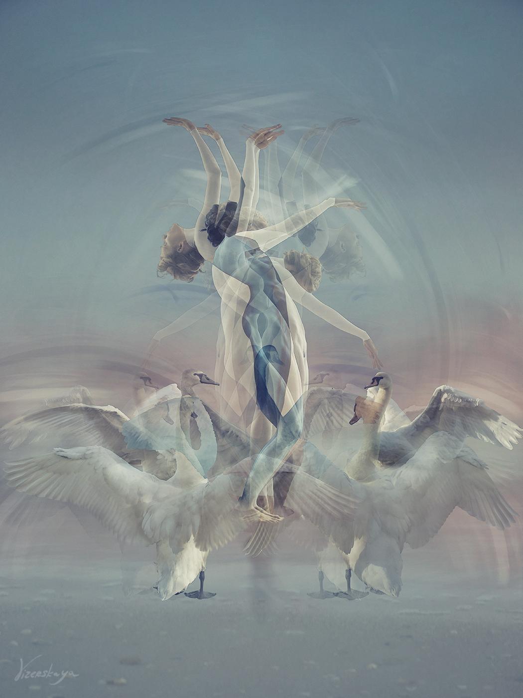 ужжас 13 декабря 2012 fucking birds они машут крыльями как жженщины руками!