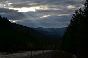 Montana Splendor?
