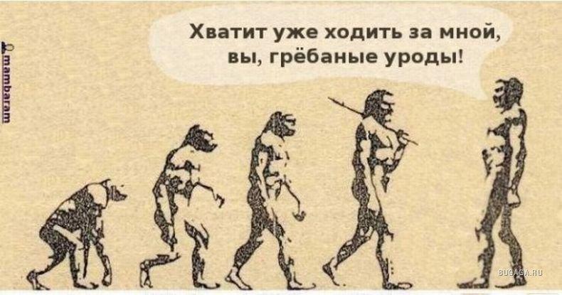 1235547175_evolution_12