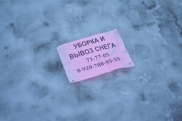 IMGP8397