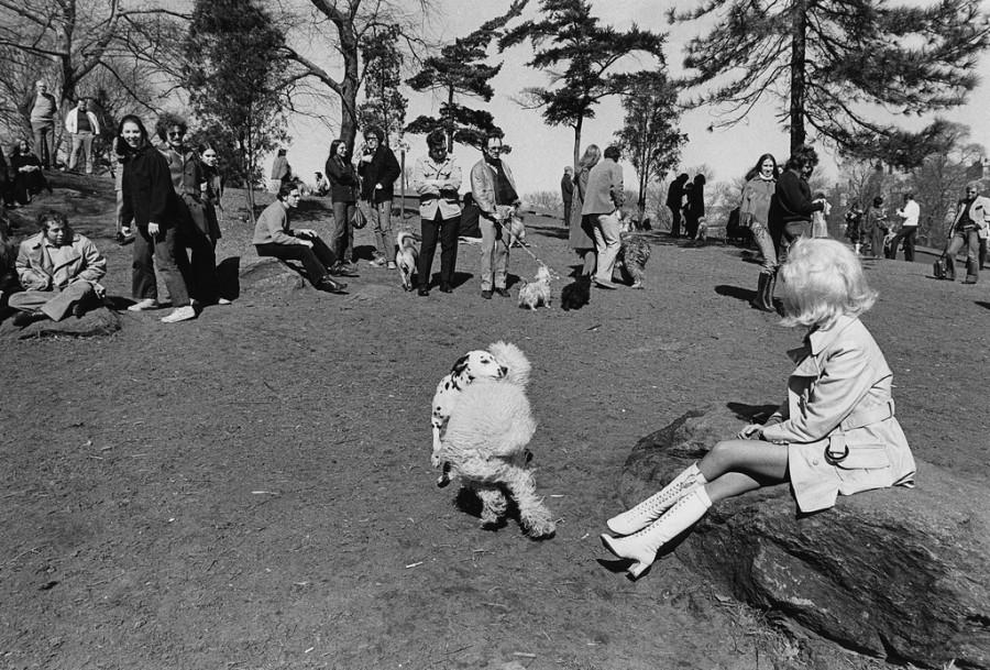 Эротика 1960 1970 смотреть онлайн 15 фотография