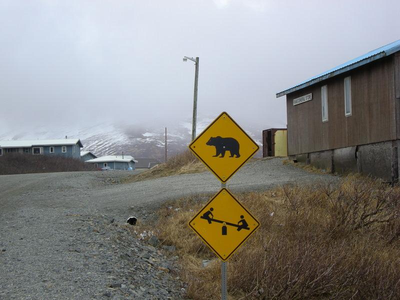warning-sign-bear-teeter