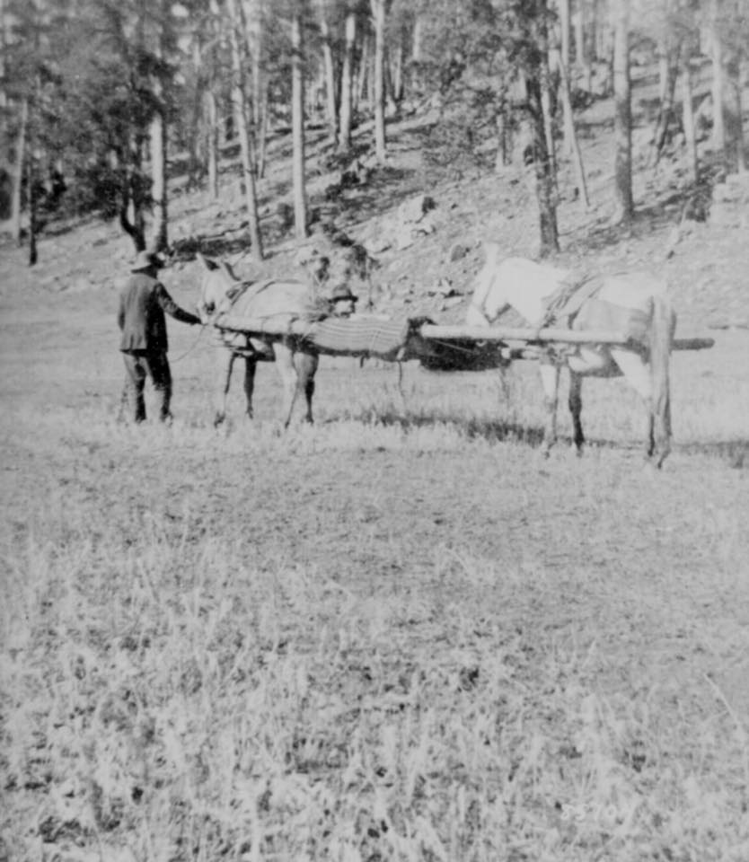 horse drawn stretcher the battle of slim buttes dakota territory 1876