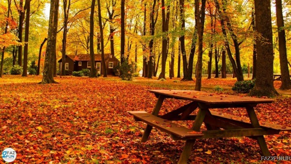 و پاییز faz2fun.ir