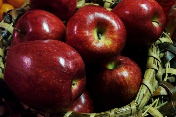 سیب-سوغات-زنوز
