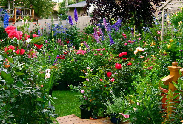 56    Flo56  wer_Garden_Picture-David_Goodgame-Alaskan_English_Cottage_Style_Garden-Gardening_Alaska_Style