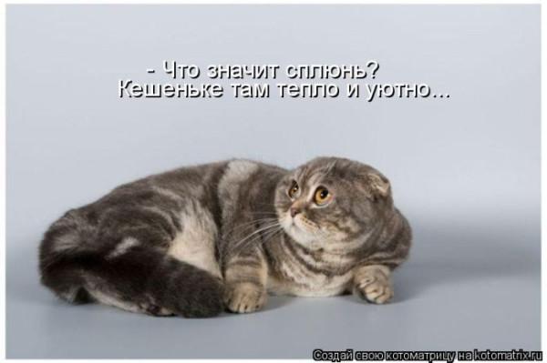 32  1369471985_kotomatrix_11