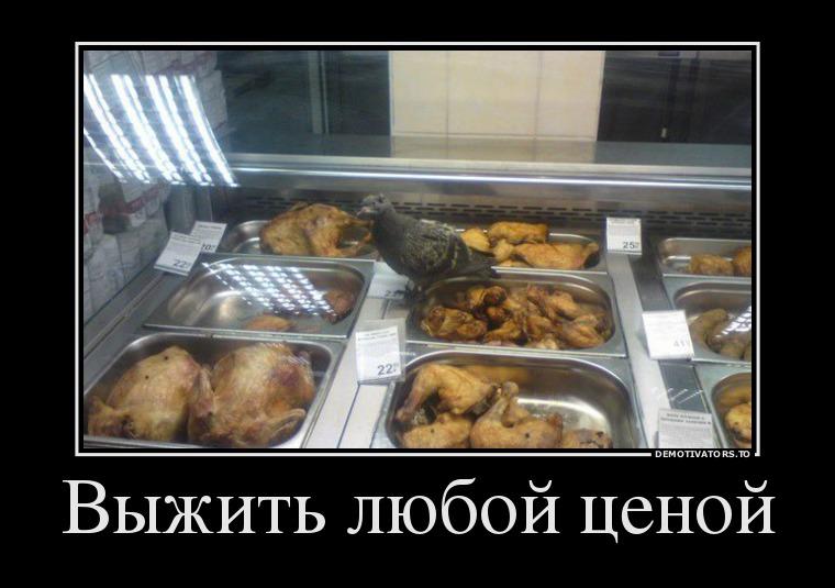 2479320_vyizhit-lyuboj-tsenoj