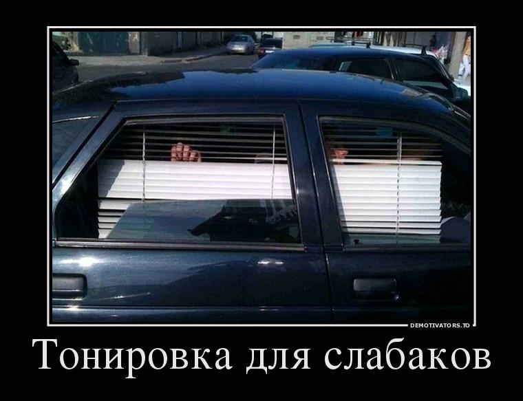 23660900_tonirovka-dlya-nischebrodov-
