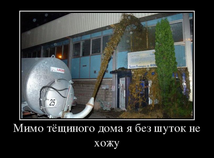 67307102_mimo-tyoschinogo-doma-ya-bez-shutok-ne-hozhu