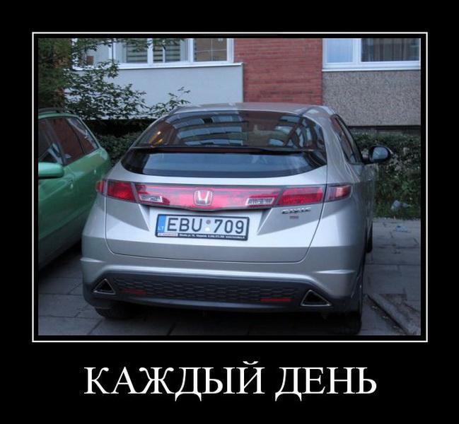 1416473731_demki-9