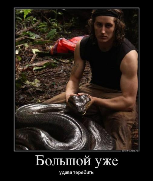 57541474_bolshoj-uzhe