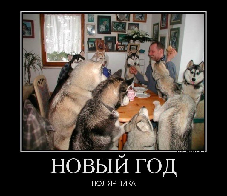 73486662_novyij-god
