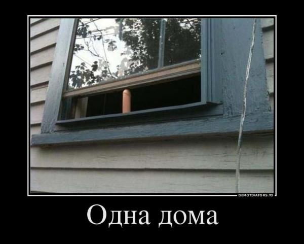 93532559_odna-doma