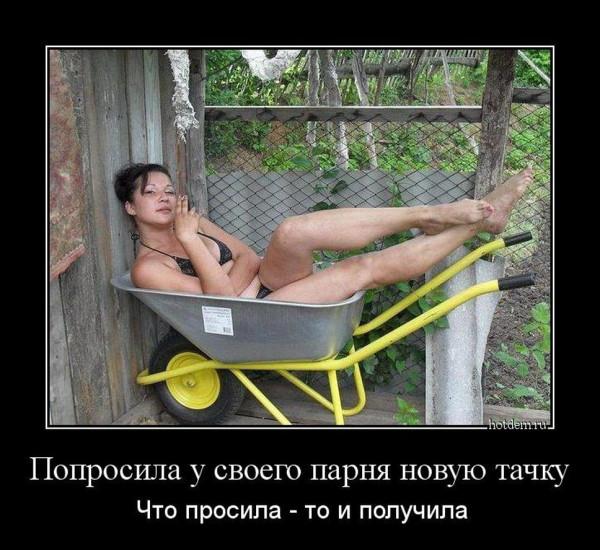 1418114384_demy-14
