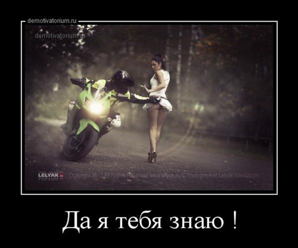 1418629296_demy-11