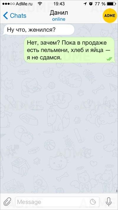0Eyk1zzvLbI
