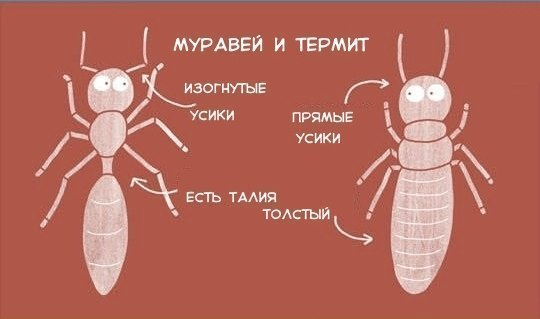 -XHnsYk375k