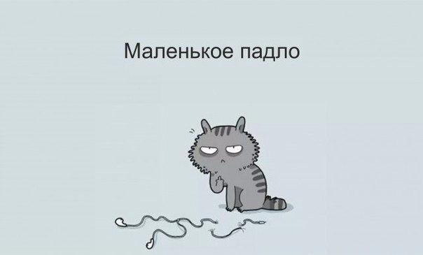 -EJBy1LLzWo