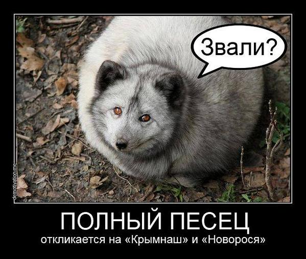 Россия официально грозит выходом из ПАСЕ - Цензор.НЕТ 8630
