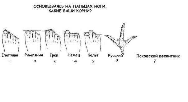 по ноге: