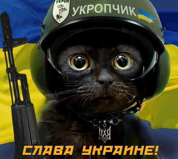 Группа из 12 диверсантов пыталась проникнуть в тыл украинских войск. Двое сдались в плен, все остальные - уничтожены, - пресс-центр АТО - Цензор.НЕТ 9222
