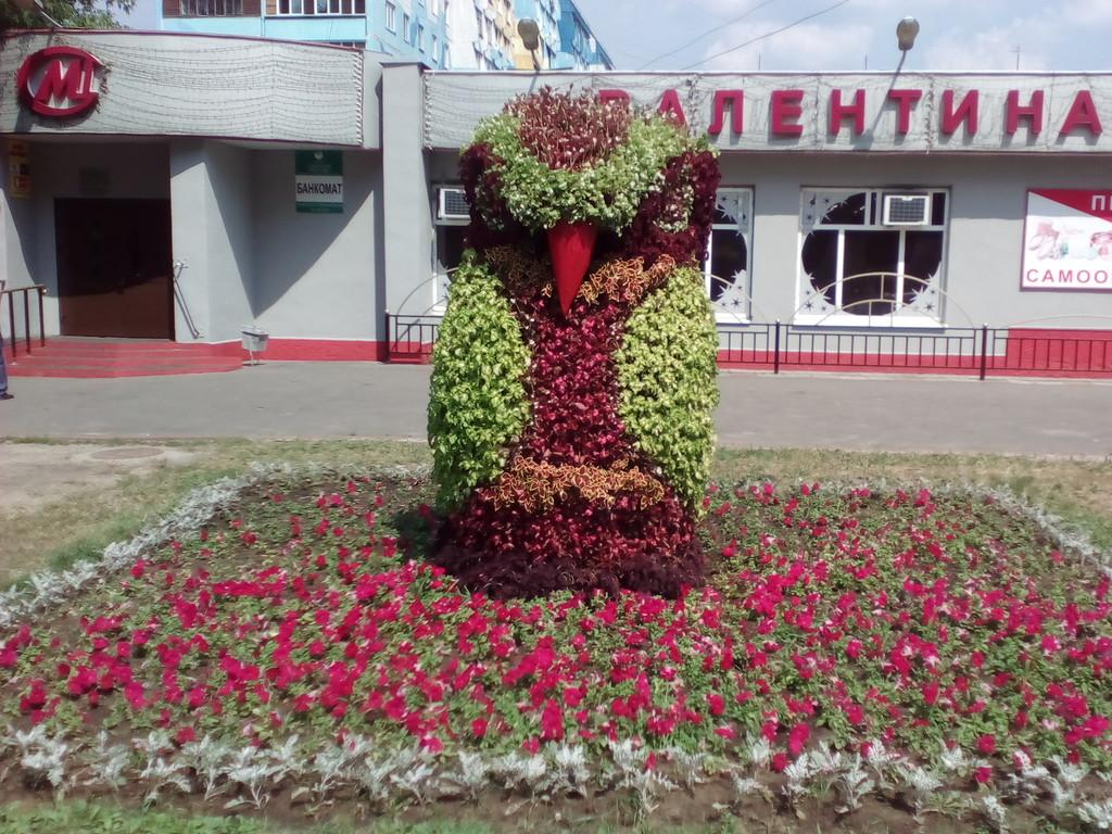 Цветов смоленск, купить цветы в раменском районе