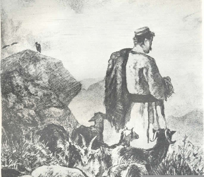 crnogorski_pastir