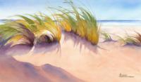 Beach-Grass-4 (Копировать)_200x117