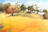 Gnarled-Trees_200x134